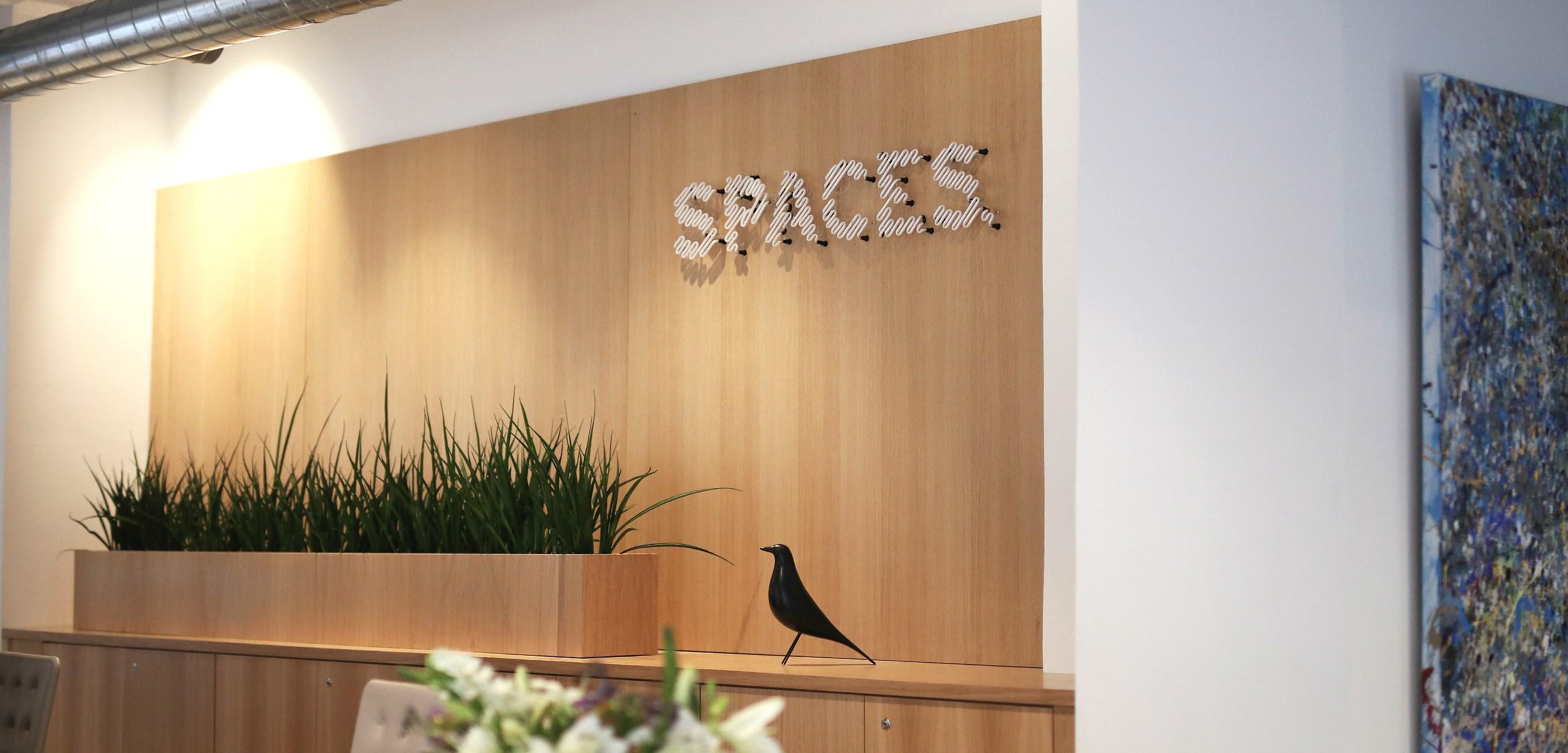 Få et unikt innblikk i Nouw sitt kontor hos Spaces